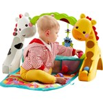 Fisher Price Babygym, Newborn To Toddler Gym