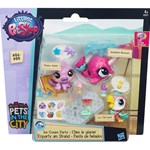 Littlest Pet Shop Littlest Petshop, Pets & Fashions, Ice Cream Party