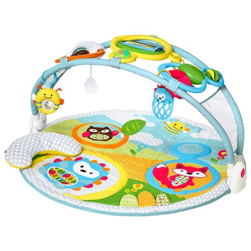 Skip HopExplore & More Amazing Arch™ Baby Gym