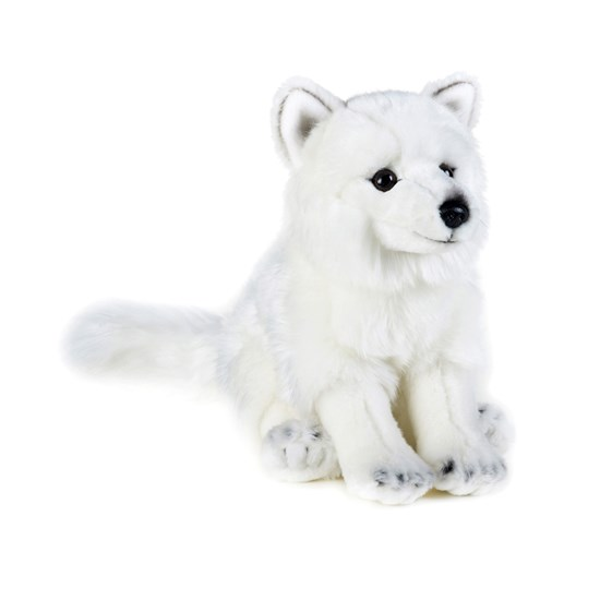 National Geographic Fox, 24 cm